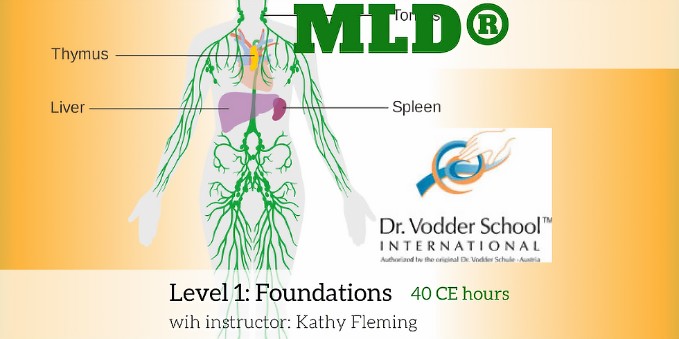 MLD Level 1: Foundations