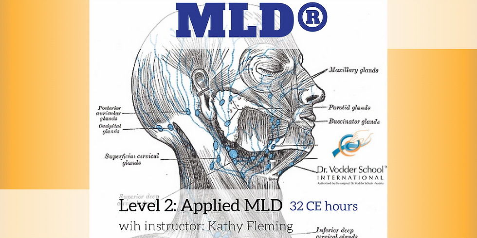 MLD Level 2: Applied MLD