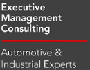 executive management consulting