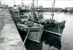 Victoria Harbour 2