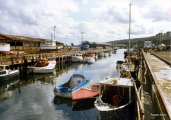 Small boats in dock
