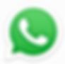 simbolo whatsapp 2.png