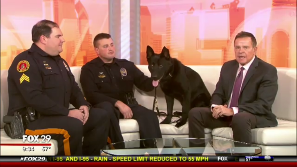 K-9 Niko - Underdog for a Day Fox 29