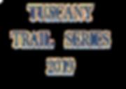 new logo SERIES 2019.png
