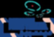 2016_dipf_logo_드론.png