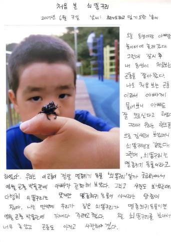최우수상(처음 본 쇠똥구리, 박규영, 영월 영월초등학교 3-4)