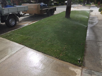 lmv-landscaping-perth-turf-care.jpg