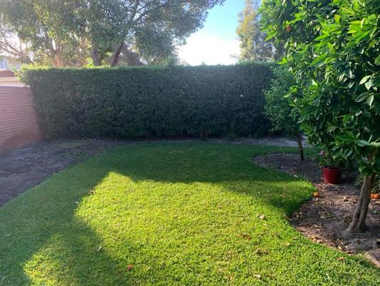 lmv-landscaping-services-perth-4.jpg