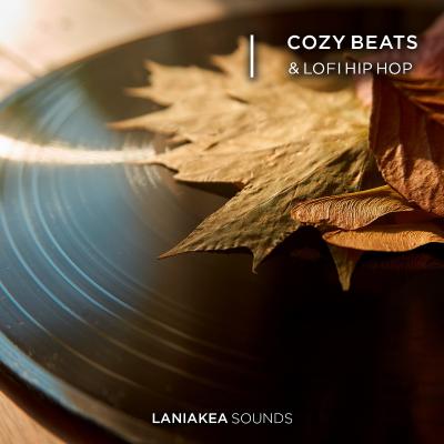 download for free Laniakea Sounds - Cozy Beats & Lofi Hip Hop (WAV)