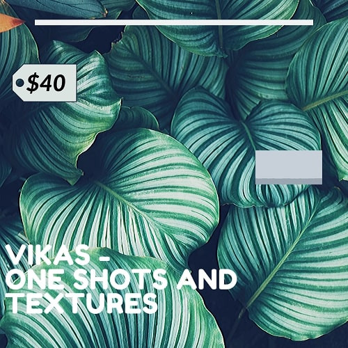 Vikas One Shots + Textures Vol.1 WAV