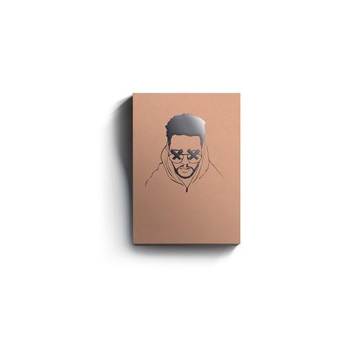 free Josh Petruccio Platinum (Sample Kit) Deluxe Version