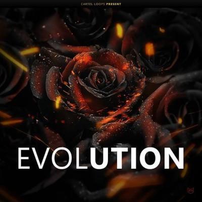 download for free  Cartel Loops - Black Roses Evolution (MIDI, WAV, FL STUDIO)