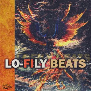 download for free Cartel Loops Lo-Fily Beats WAV MIDI