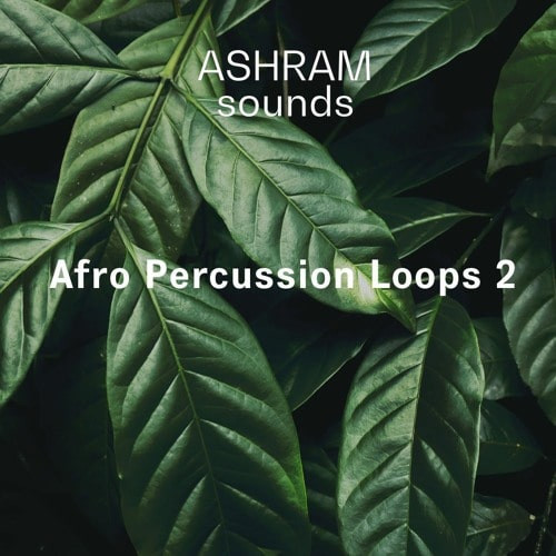 free Riemann Kollektion ASHRAM Afro Percussion Loops 2 WAV