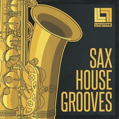 free Looptone Sax House Grooves WAV