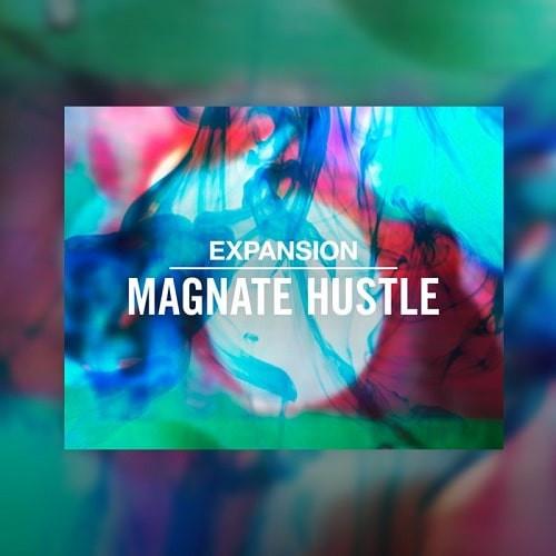 download fro free NI Expansion: Magnate Hustle v2.0.1 WIN & MAC