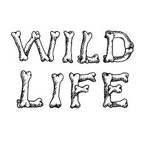 Wildlife2_edited.jpg