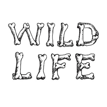Wildlife Radio
