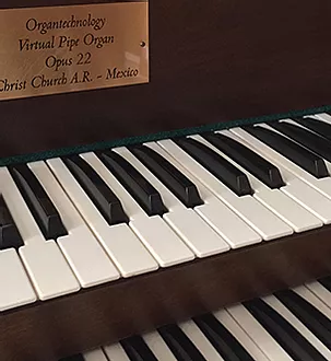 organo.webp
