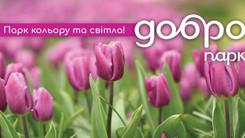 У приватному дендрологічному парку «Добропарк» розквітне  3 700 000 тюльпанів.