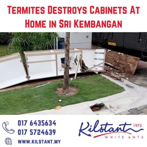 Termites Destroy Cabinets at Sri Kembangan Home
