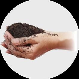 Soil Treatment.png