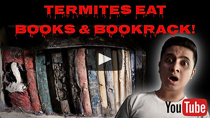 Termites Damages Books.jpg
