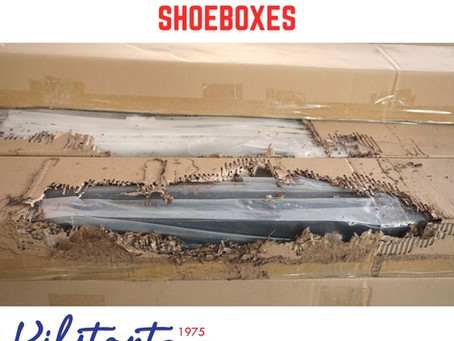 Can & Why do Termites Eat  Card box & Shoebox?