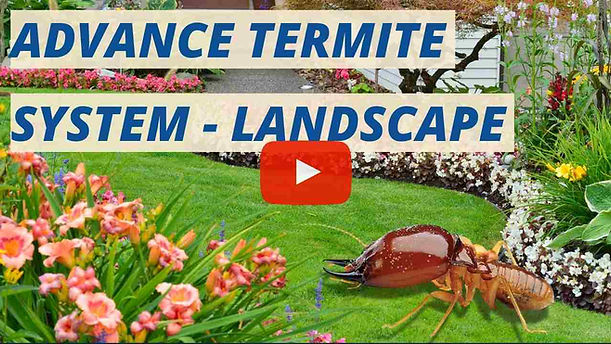 Advance Termite System for Landscape Malaysia