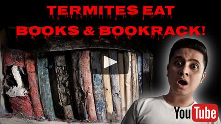 Termites Enjoy Reading/Devouring Books!