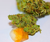 Check out our Stardawg review on High Times