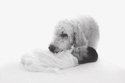 Hamish Newborn-2b