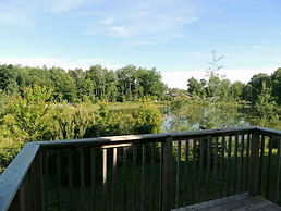 Serene Views from Back Deck