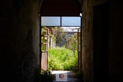 02-07  Genova Rulli