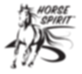 20170606_HorseSpirit_Logo copy.png