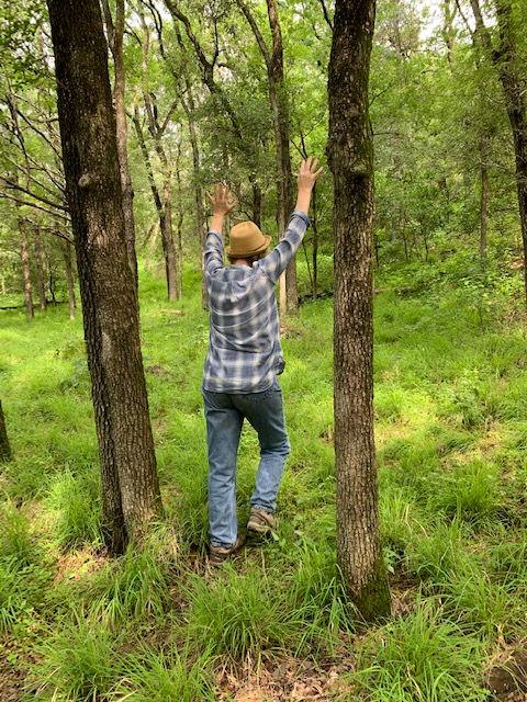 Nature Healing Mini-Retreat