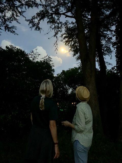 Full Moon Nature Healing