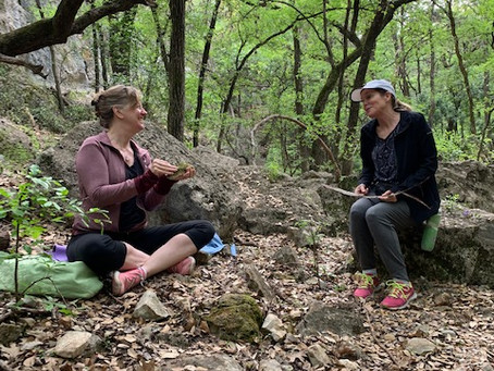 What is Forest Therapy?