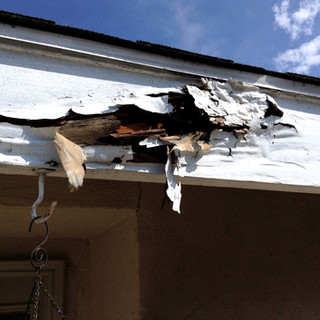 Exterior Inspection. Wood Rot.