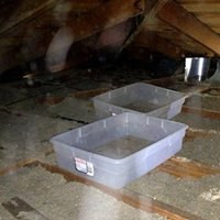 Attic Inspection. Great indicator of a roof leak.