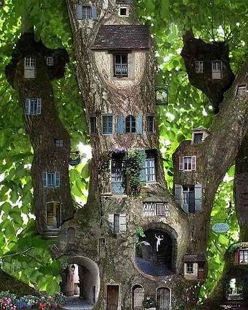une certaine vision de l'arbre.jpg