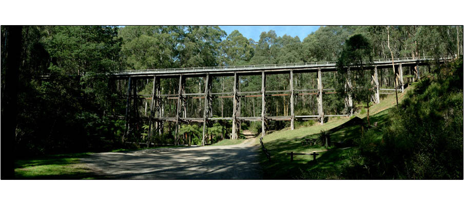 Trestle Bridge near Noojee (0057)