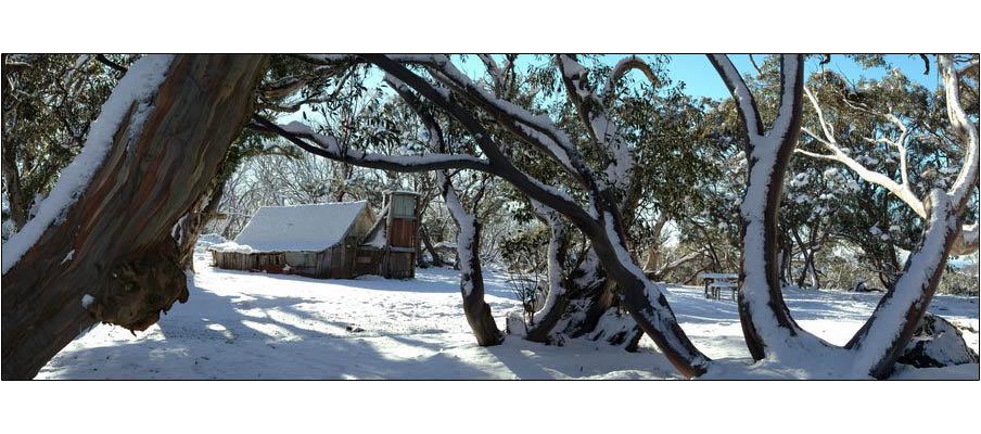 Wallaces Hut (0094)