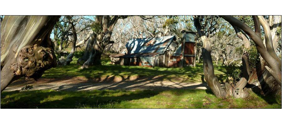 Wallaces Hut (0089)