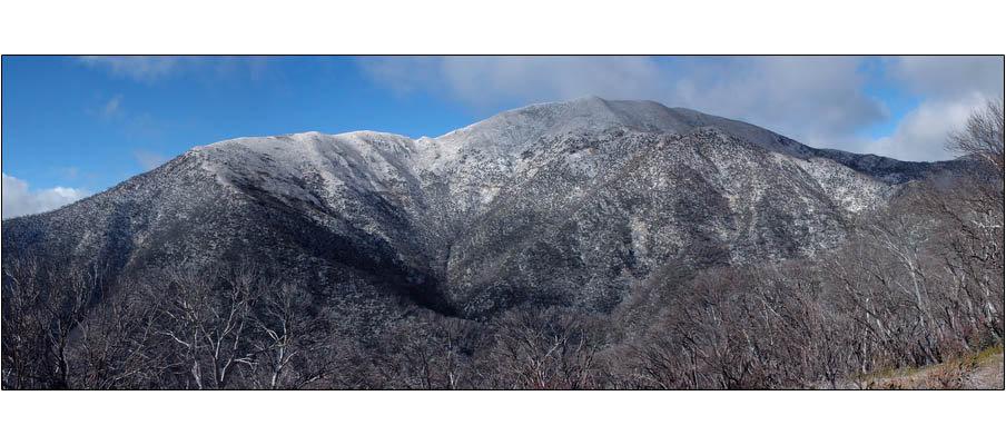 Mt Feathertop (0049)