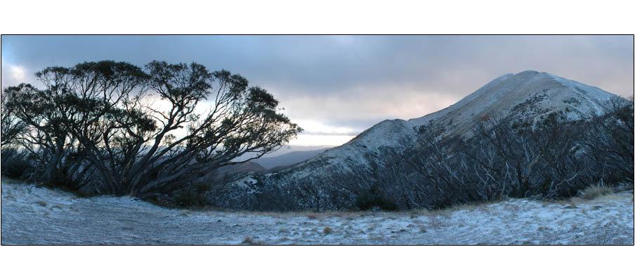 Mt Feathertop (0051)
