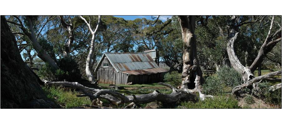 Wallaces Hut (0091)
