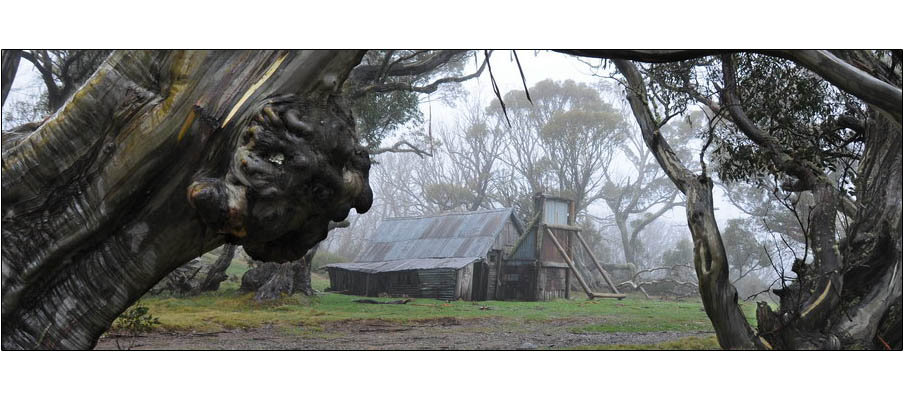 Wallaces Hut (0118)