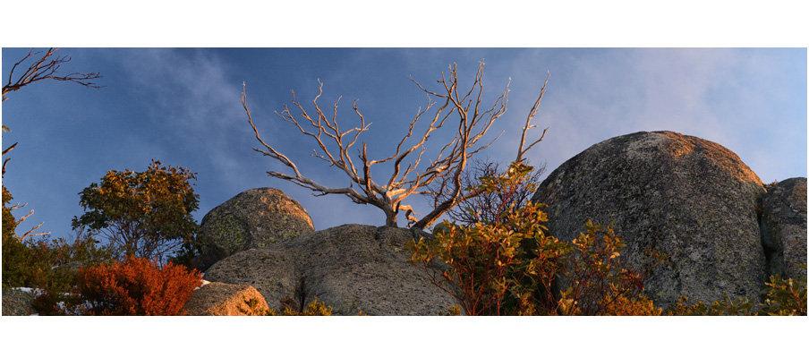 Mount Buffalo Winter Colours (0205)