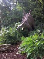 Sculpture d'un stégosaure